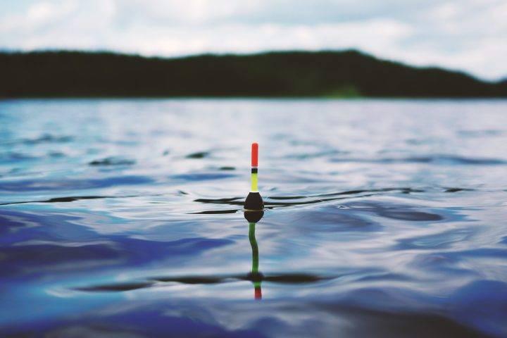 Поплавочная рыбалка