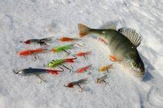 Рыбалка в зимнее время года