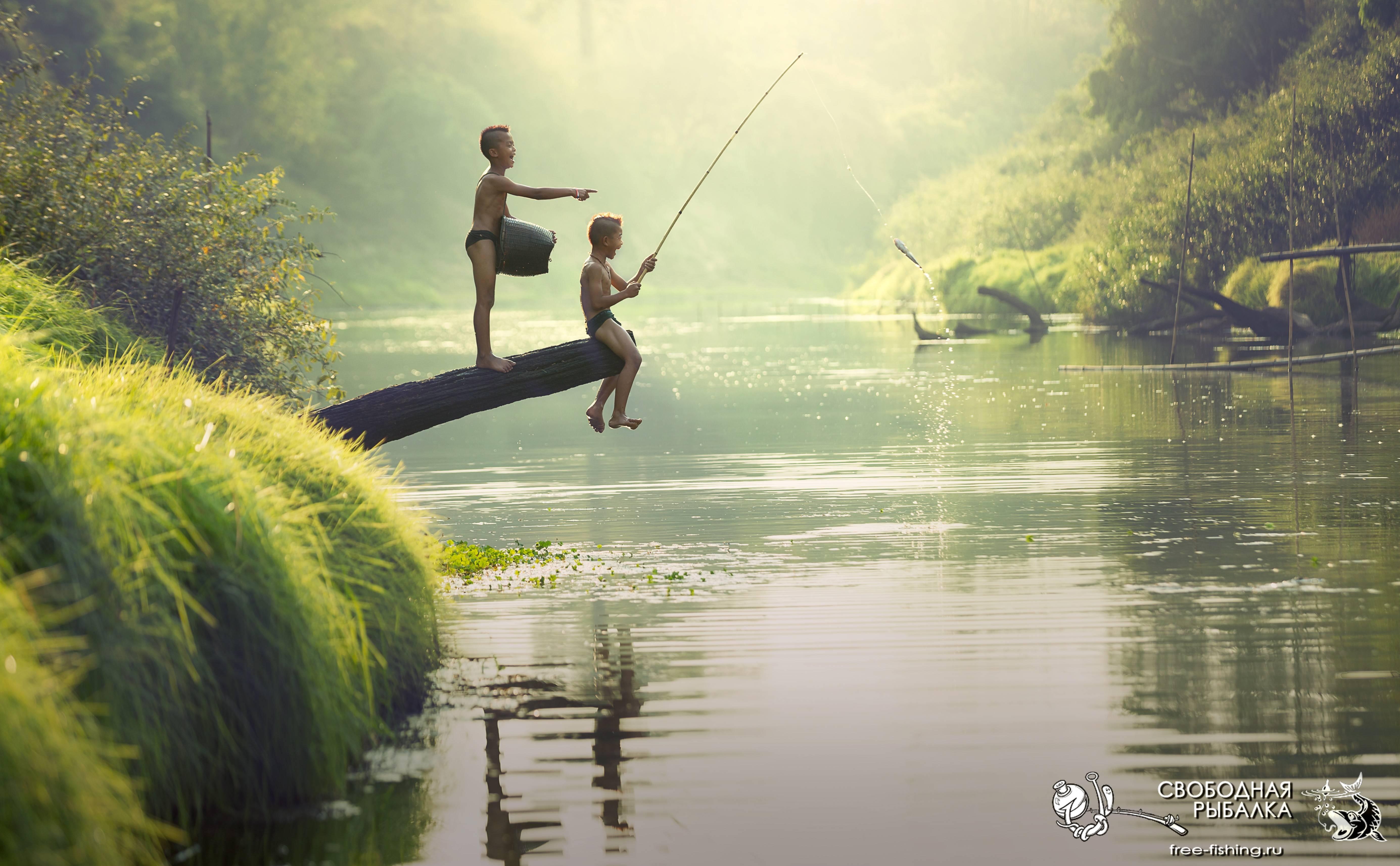Ловля рыбы во время запрета