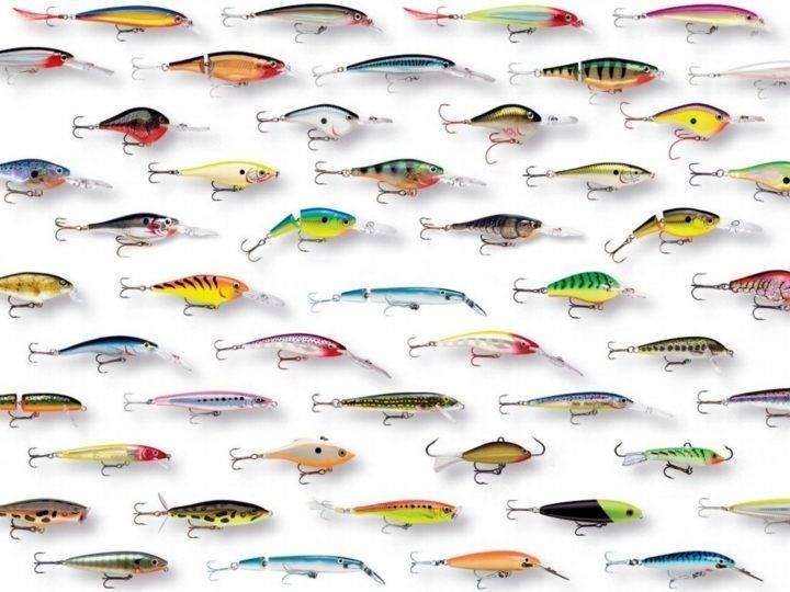 ловля. хищной. рыбы. на. воблеры