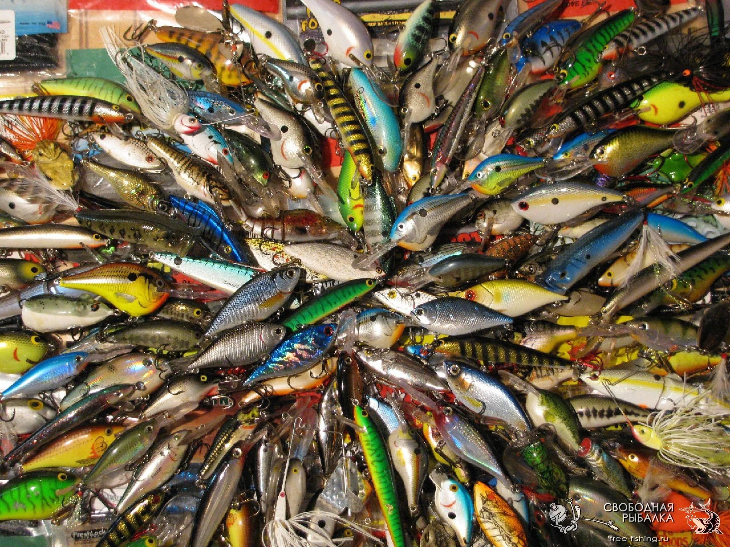 Снасть на хищную рыбу