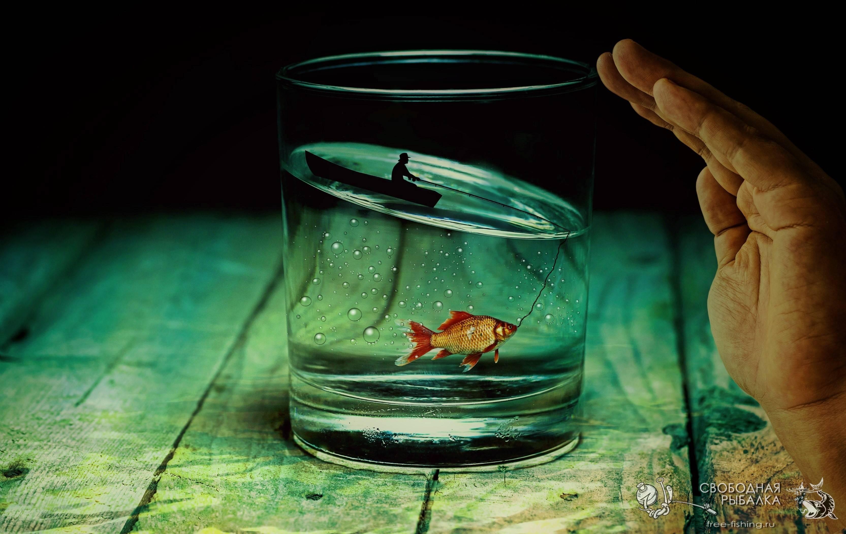 Барджер.Ру – лучший интернет магазин для рыболова